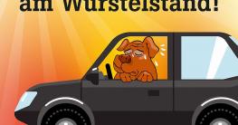 Hunde Hitze Auto